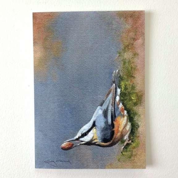nuthatch for website 1